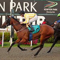 Dominium and Robert Tart winning the 7.10 race