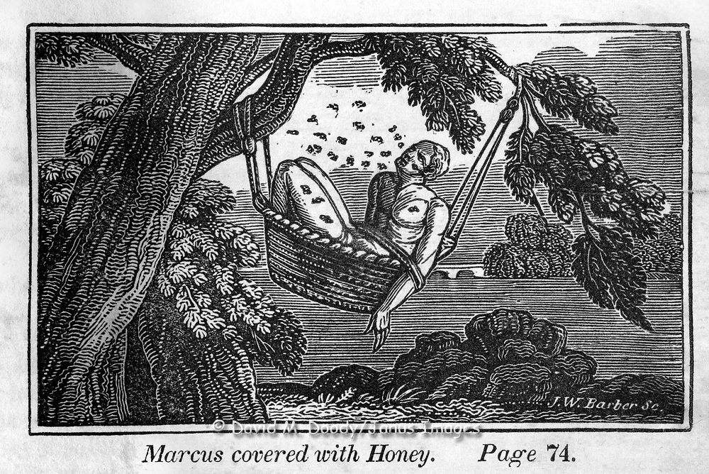"""""""marcus is covered with honey"""" Protestant vs Catholic violence. Vintage Woodcut Illustration from: """"Book of Martyrs"""" Tortures carried out in the name of religion."""