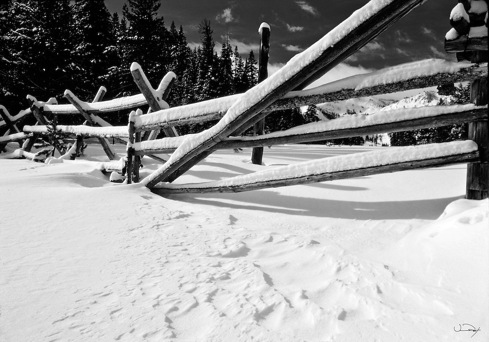 Winter Scene - Rail Fence