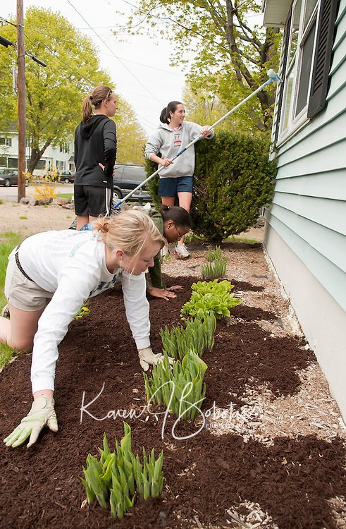 Laconia High School National Honor Society students Maddy Philpot and Derique Montique spread mulch while Abby Teichart and Emily Dionne wash windows at Diane Godbout's home in Laconia Thursday during the groups annual Spring clean up project.  (Karen Bobotas/for the Laconia Daily Sun)