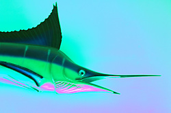 Mounted swordfish on wall Abstract design image fish trophy kitsch