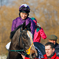 Purple Affair and Racheal Kneller in the 3.00 race