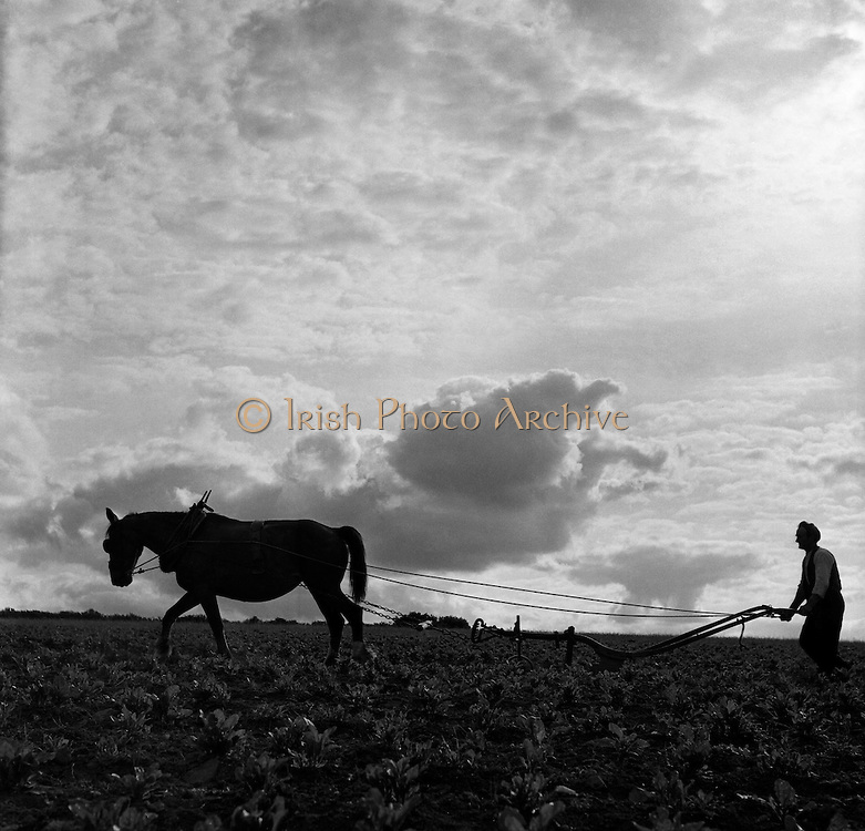 Ploughing at Stoneyford.05/07/1953