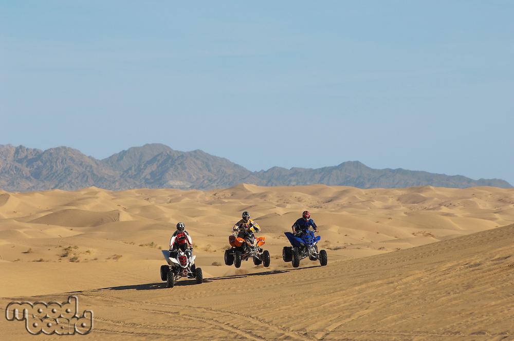 Men riding quad bikes in desert