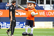 The Luton Town mascot, Harry Hatter, fools around with ground staff before the Pre Season Friendly match at Kenilworth Road, Luton<br /> Picture by David Horn/Focus Images Ltd +44 7545 970036<br /> 26/07/2014