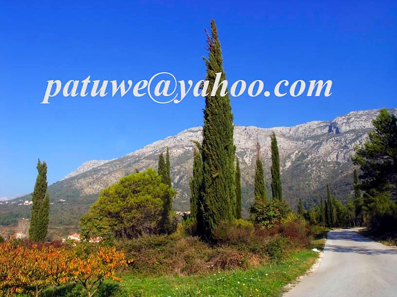 Konavle valley south of Dubrovnik, Dalmatia, Croatia