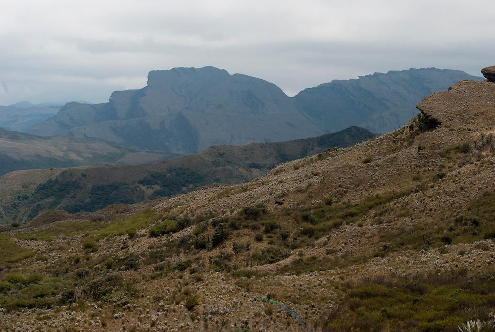El Parque Nacional Natural Chingaza se encuentra ubicado en la cordillera Oriental en la regi&oacute;n andina en Colombia. Su superficie hace parte de los departamentos de Cundinamarca y Meta. <br /> <br /> Fue creado en mayo de 1977 y aprobado por la resoluci&oacute;n No. 154 del 6 de junio del mismo a&ntilde;o. Se extiende en las jurisdicciones de los municipios de La Calera, F&oacute;meque, Guasca y San Juanito.<br /> <br /> El parque tiene una extensi&oacute;n de 76.600 hect&aacute;reas y alturas entre 800 y 4.020 msnm. Posee climas c&aacute;lido, templado, fr&iacute;o y de p&aacute;ramo. Sin embargo, en todas las zonas ecotur&iacute;sticas el clima es p&aacute;ramo o muy fr&iacute;o y lluvioso, comprendiendo ecosistemas tan variados como humedales, selvas y bosque h&uacute;medos. <br /> <br /> La temperatura oscila entre los 4 y 21,5 &deg;C. All&iacute; nacen los r&iacute;os Guatiqu&iacute;a y Fr&iacute;o, y las abundantes lluvias crean lagunas como las de Siecha y Chingaza. Esta es la m&aacute;s grande de las lagunas naturales que existen en el parque, cuyo n&uacute;mero sobrepasa las 100.<br /> <br /> Posee m&aacute;s de 383 especies de plantas y se estima que la flora total del &aacute;rea puede sobrepasar las 2.000 especies. Los frailejones, las &aacute;rnicas y los musgos de pantano son maravillas para la conservaci&oacute;n de la humedad ambiental.<br /> <br /> &copy;Alejandro Balaguer/Fundaci&oacute;n Albatros Media.