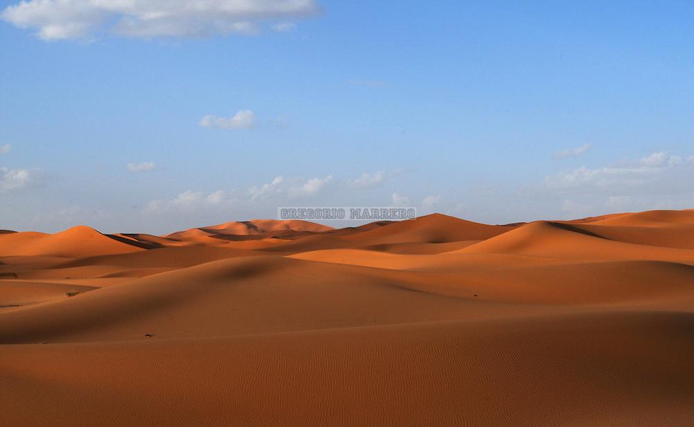 El desierto del Sahara o Sáhara es el desierto cálido más grande del mundo, con unos 9.065.000 km² de superficie. Está localizado en el norte de África. Limita por el este con el mar Rojo, y por el oeste con el Océano Atlántico; en el norte con las montañas Atlas y el mar Mediterráneo. Tiene más de 2,5 millones de años. Su nombre deriva del árabe ?a?r?? traducción de la palabra tuareg de Teneré (desierto). Sahara, Marruecos, Octubre 04, 2008. (Gregorio Marrero/Orinoquiaphoto)