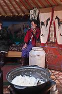 Mongolia. Gambolt family; cattle breeder in Uyanga area, daily life in the yurt  aymak -   /  La famille Gambolt . famille d'eleveurs dans la region de Uyanga. vie quotidienne dans la yourte  ovorkangai province - Mongolie /  L0009102