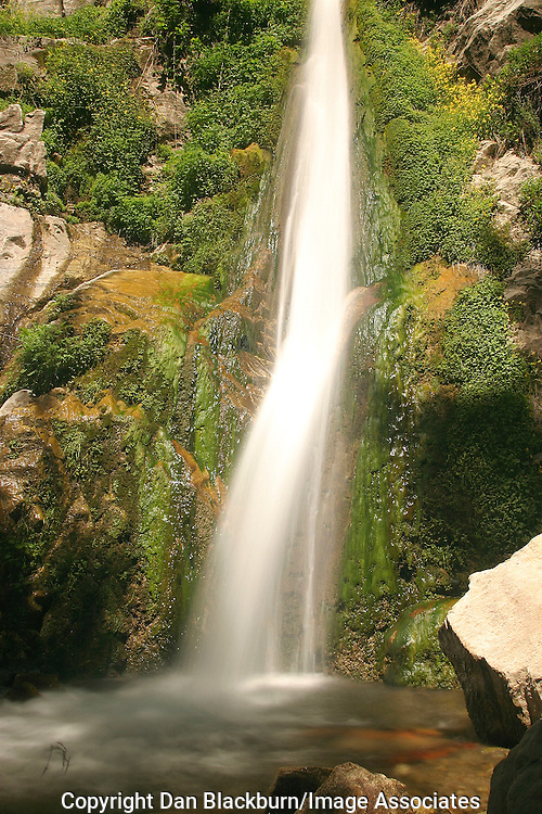 Soldier Creek Falls drops into a basin in the Angeles National Forest in California.