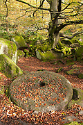 Abandoned millstone scattered with autumn leaves lies on the woodland floor amid the rocky boulders of Padley Gorge, Peak District, UK