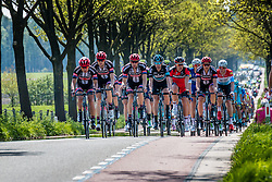 Peloton with Team Giant - Alpecin (GER) leading on the Hoenderloseweg at Deelen, stage 2 from Arnhem to Nijmegen running 190 km of the 99th Giro d'Italia (UCI WorldTour), The Netherlands, 7 May 2016. Photo by Pim Nijland / PelotonPhotos.com | All photos usage must carry mandatory copyright credit (Peloton Photos | Pim Nijland)