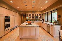 Contemporary kitchen in luxury villa