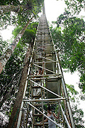 Ulu Temburong National Park (formerly the Batu Apoi Forest Reserve) is an area of lowland rainforest only reachable by longboat in Temburong district, Brunei