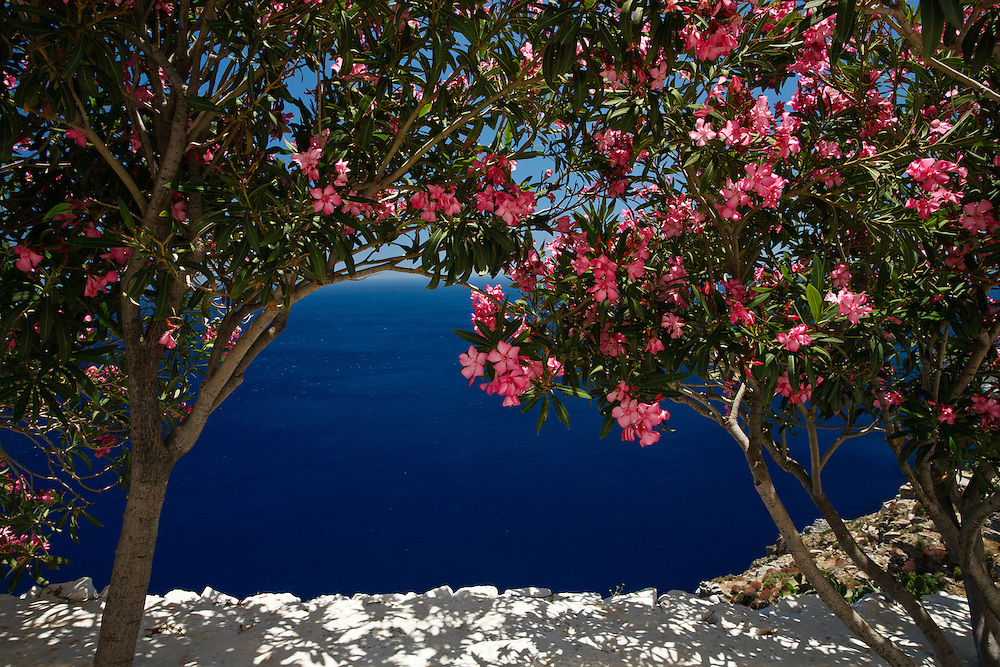 Bougainvilla frames deep blue ocean on path to hozoviotissa monastery, Amorgos, Cyclades, Greece