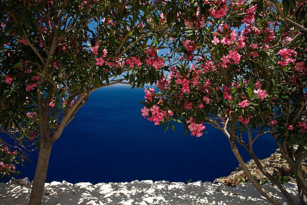 Bougainvilla frames deep blue ocean on path to hozoviotissa monastery, Amorgos, Cyclades, Greece