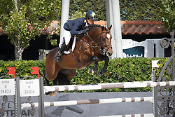 Rivetti Cassio (UKR) - Vivant<br /> Furusiyya FEI Nations Cup Jumping Final Round 1<br /> CSIO Barcelona 2013<br /> © Dirk Caremans