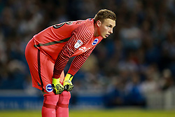 David Stockdale of Brighton & Hove Albion - Mandatory by-line: Jason Brown/JMP - 13/09/2016 - FOOTBALL - Amex Stadium - Brighton, England - Brighton & Hove Albion v Huddersfield Town - Sky Bet Championship