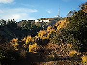 View of the Hollywood Sign in Bronson Park. iPhone photo