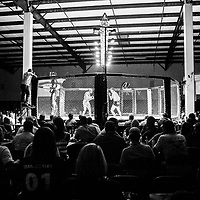 The crowd watches Deonte Sullivan, left, of Memphis, and Nelson Browning of Tupelo circle the ring during their MMA fight on Saturday, August 5th during the Summit Fighting Championships match at the Tupelo Furniture Market. Browning was declared the winner of the fight, and their match was one of 17 that took place that night. The headlining fight was between Tupelo's Grady Hurley and Taylor Callens, with Hurley winning the title.