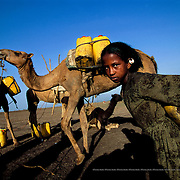 Their improved family income has made it possible for the Germais to buy a camel with which they can transport 80 litres of water on each trip. Raya-Mehoni, Ethiopia.