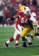 Arizona Cardinals inside linebacker Dwight Freeney (54) chases the action during the NFL NFC Divisional round playoff football game against the Green Bay Packers on Saturday, Jan. 16, 2016 in Glendale, Ariz. The Cardinals won the game in overtime 26-20. (©Paul Anthony Spinelli)
