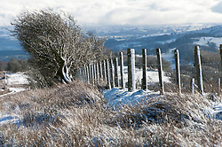 © Licensed to London News Pictures. 30/01/2019. Builth Wells, Powys, Wales, UK. A wintry landscape on the wild moorland of the Mynydd Epynt range near Buith Wells in Powys, Wales, UK. as snow continues to fall in Powys, Wales, UK. credit: Graham M. Lawrence/LNP