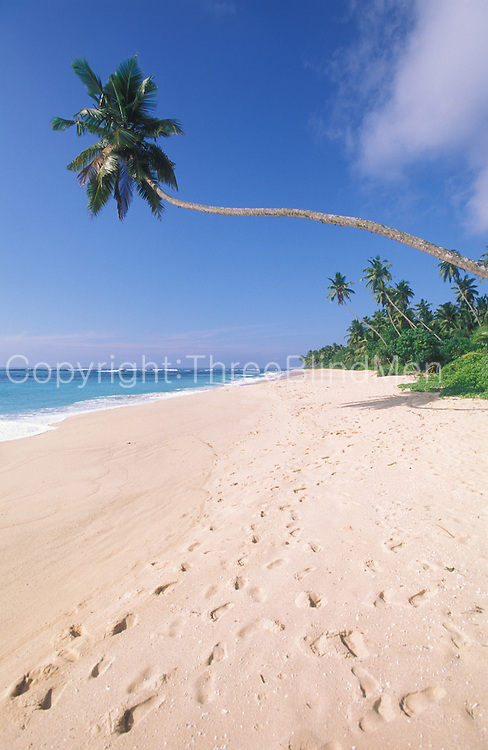 Sri Lanka..Beach on the south coast of the island.