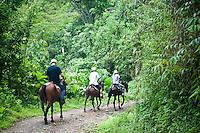 Santa Juana, Costa Rica