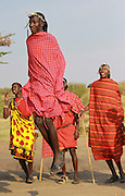 Kenya, Masai Mara, Masai (Also Maasai) Tribesmen an ethnic group of semi-nomadic people