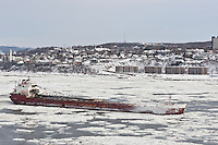 Montreal based Canadian Steamship Line vessel, Balarium, traversing the frozen waters of the Saint Lawrence River at Quebec City, Quebec. January 6, 2012. © Allen McEachern.