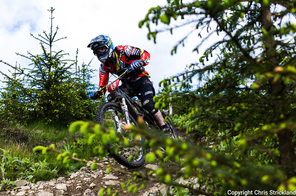 Glentress, Peebles, Scotland, UK. 31st May 2015. Jamie Nicoll in action at The Enduro World Series Round 3 taking place on the iconic 7Stanes trails during Tweedlove Festival. Mountain bikers come up against eight stages across two days, with an intense 2,695 metres of climbing over 93km. As well as the physicality of the liaisons, the stages themselves are technical, catching many off guard.