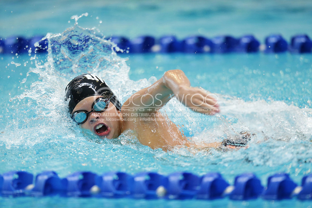 Swimmers Athletes April 9 2014