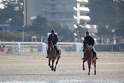 Guerdat Steve, (SUI), Corbinian, Estermann Paul, (SUI), Castlefield Eclipse <br /> Sunday morning beach training - La Baule 2016<br /> © Hippo Foto - Dirk Caremans<br /> 15/05/16