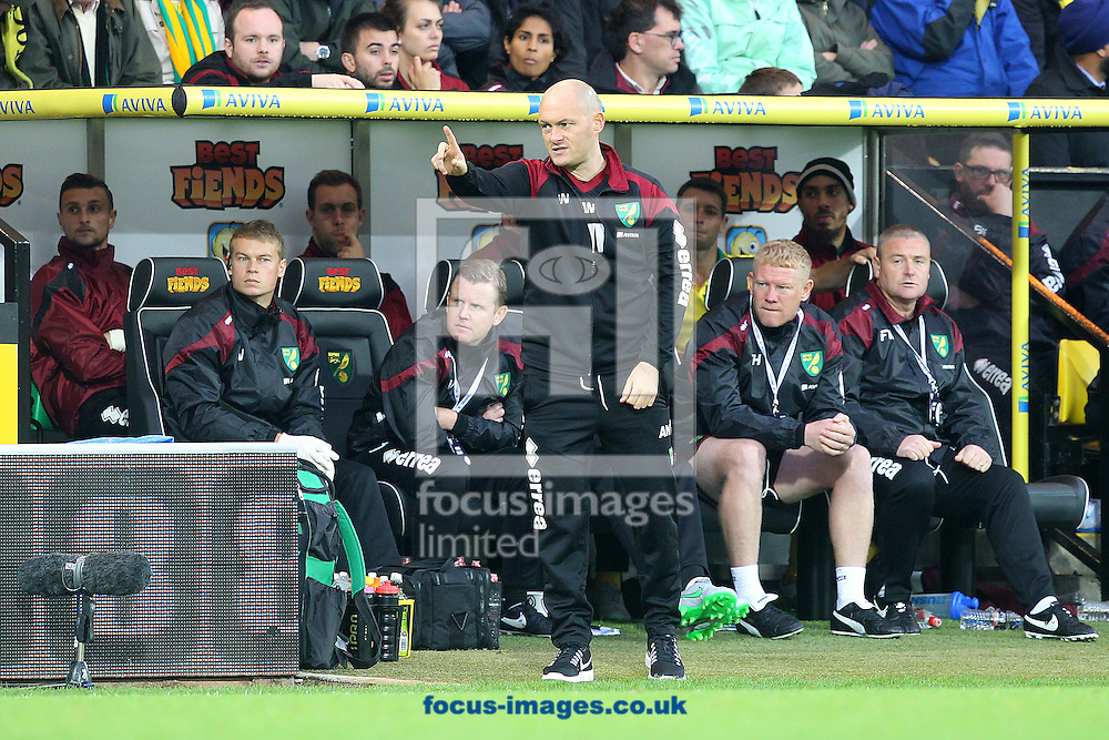Norwich Manager Alex Neil during the Barclays Premier League match at Carrow Road, Norwich<br /> Picture by Paul Chesterton/Focus Images Ltd +44 7904 640267<br /> 24/10/2015