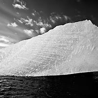 LeConte Bay monochrome