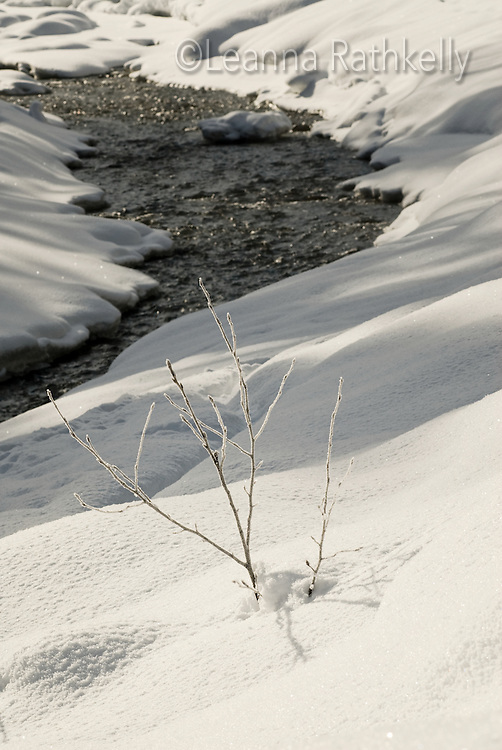 Fresh snow creates wonderful sparkle and texture along the Fitzsimmons Creek in Whistler, BC Canada