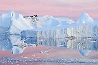 Reflecting glacial ice from Ilulissat Glacier, Greenland's only UNESCO World Heritage site and our planet's fastest flowing body of ice.