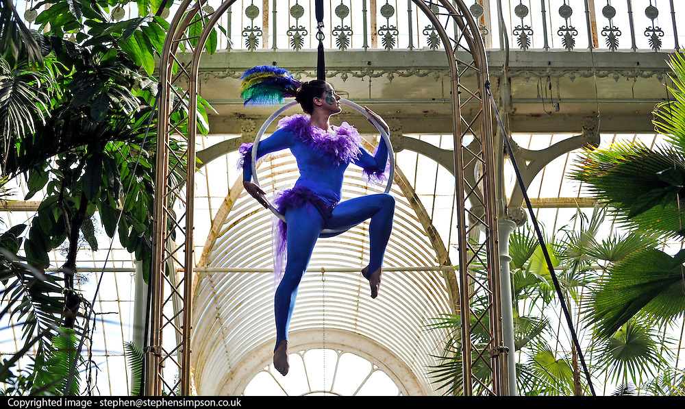 © under license to London News Pictures. LONDON, UK  10/05/2011. The Launch of Kew Gardens Summer Festival in West London, today (10/05/2010). Zahara O'Brien and Sophie Page-Hall perform an acrobatic display, evoking tropical birds in the iconic Palm House. .Photo credit should read Stephen Simpson/LNP.