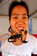 SHENYANG, CHINA - JULY 10: (CHINA OUT) <br /> <br /> Insect Feast <br /> <br /> A girl holds a scorpio skewer during Shenyang Summer Food Festival in Shenyang, Liaoning province of China. <br /> ©Exclusivepix