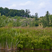 Exposed cliff in Toronto Brickworks quarry,  in the reclaimed native landscape park,