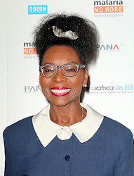 © Licensed to London News Pictures. 08/04/2014, UK. Floella Benjamin; Labour MP for Streatham, Half of a Yellow Sun Film Premiere, Odeon Streatham, London UK, 08 April 2014. Photo credit : Richard Goldschmidt/Piqtured/LNP