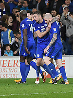 Football - 2017 / 2018 Sky Bet Championship - Cardiff City vs. Nottingham Forest<br /> <br /> Aron Gunnarsson of Cardiff City celebrates scoring his team's second goal, at Cardiff City Stadium.<br /> <br /> COLORSPORT/WINSTON BYNORTH
