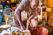 16 JUNE 2012 - GILA RIVER INDIAN COMMUNITY, PHOENIX, AZ: Ibrahim Swara-Dahab holds down a sheep while he slaughters it in the Muslim halal tradition. Swara-Dahab, 57, left Somalia in 1993. He lived in a refugee camp in Kenya for five years before coming to the United States and settled in the Phoenix area in 2006. He got a $10,000 loan from the micro-enterprise development program for refugees. The money allowed him to buy dozens of goats and sheep, each worth $130 to $200, turning his one-sheep operation into a money-making, time-consuming herd. He now operates a full time goat ranch and slaughter house. He slaughters his goats and sheep in the Muslim halal tradition. Most of his customers are fellow refugees and Muslims who prize goat meat or eat only meat slaughtered according to halal traditions. His butchering operation is on the Gila River Indian Community, near Laveen, AZ, just southwest of Phoenix.    PHOTO BY JACK KURTZ