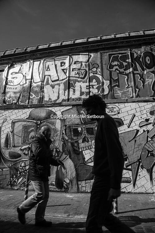 France. Paris 20th distriuct. ; Belleville .area . Rue Denoyez  , mural art street / Rue Denoyez art mural