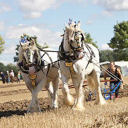 National Ploughing Championships 2016  General Purpose
