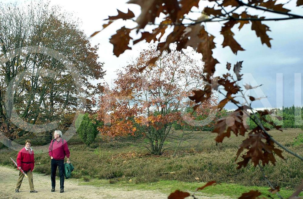 fotografie frank uijlenbroek&copy;2004 michiel van de velde<br />041026 lemele ned<br />Sfeervolle herfstfoto op en rond de Lemelerberg.