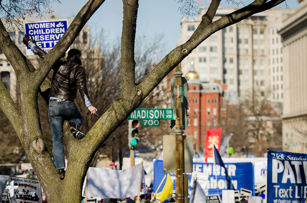 A man climbs a tree Wednesday, Jan. 22, 2014, as groups converge for the 41st March for Life in Washington, D.C. LCMS Communications/Erik M. Lunsford