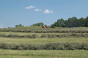 hayfield, raked hay, blue sky