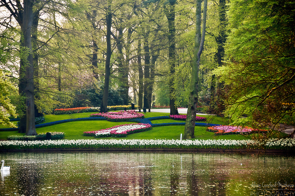 The central pond at Keukenhof Spring Tulip Gardens in Lisse, The Netherlands